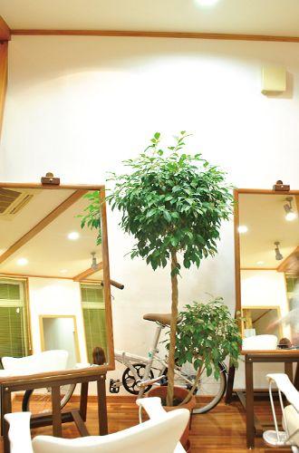 癒しの店内でゆったりとしたサロンタイムを満喫♪<br>アットホームな雰囲気に包まれた店内でゆったりとした贅沢な時間。